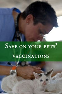 pets, animals, cats, dogs, medications, vaccinations, vaccines, Banfield, shots, frugality, save money, saving, personal finance