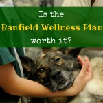 Is the Banfield Wellness Plan worth it?