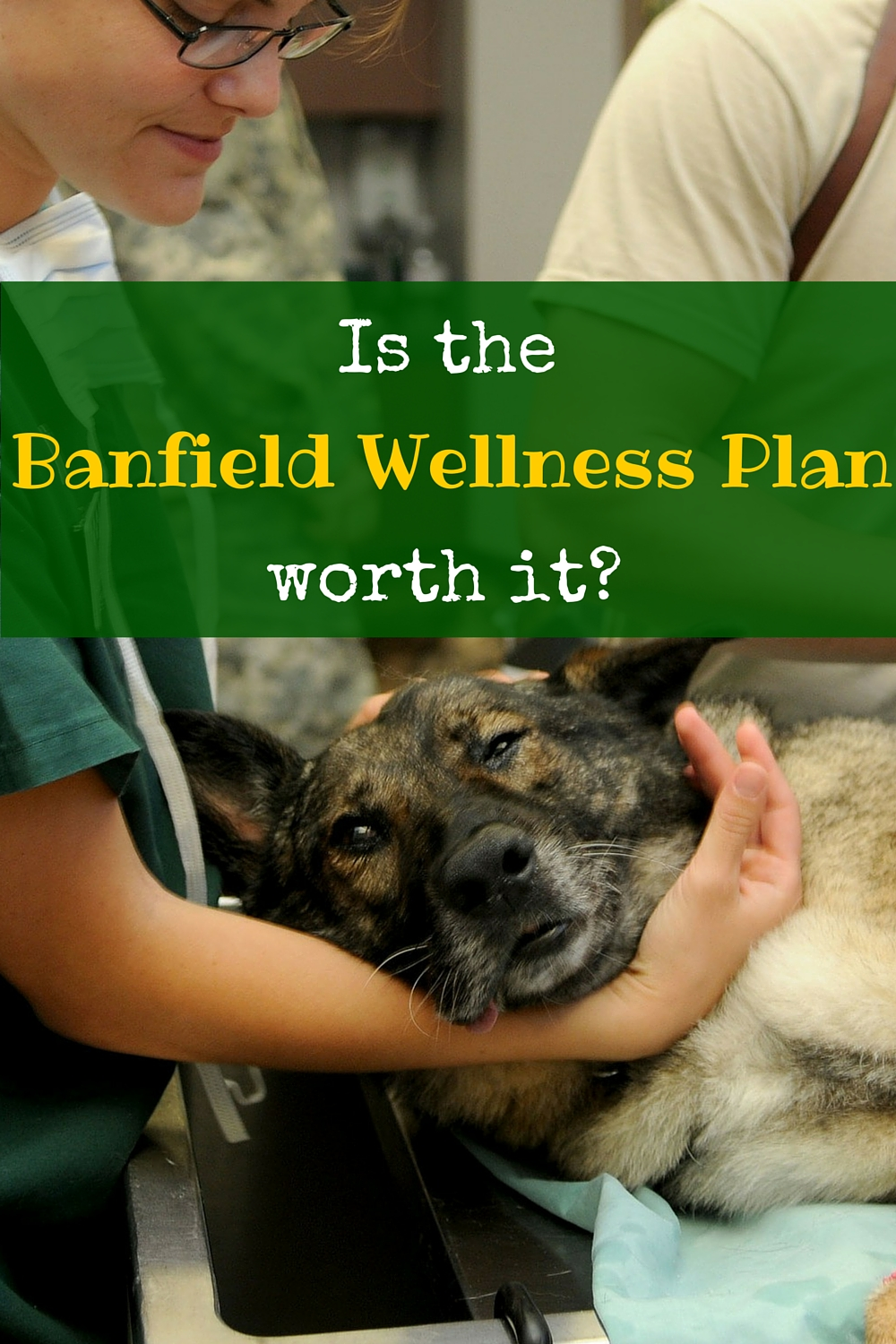 Petsmart's Banfield Hospital offers Optimum Wellness Plans for your pets. They're pricey, but are they worth it?