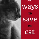 5 ways to save money on cat litter